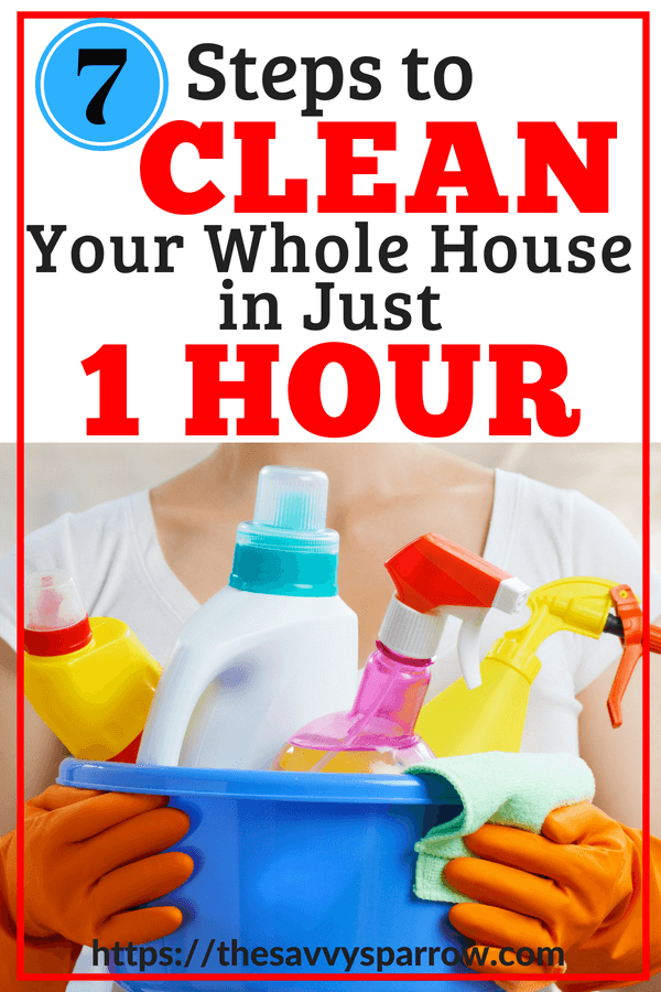 Clean Your Whole House in just One Hour!