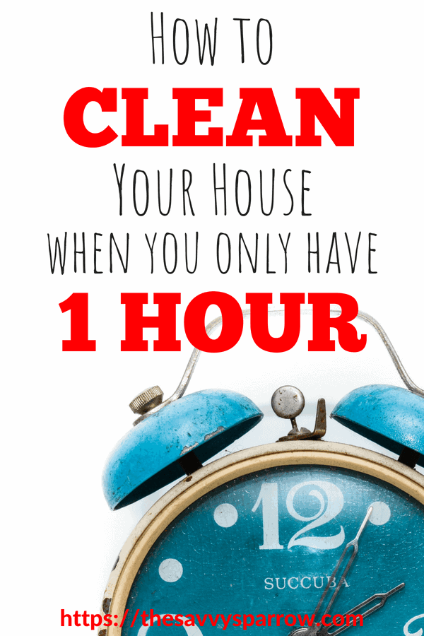 7 Steps to Clean Your Whole House in just one hour!