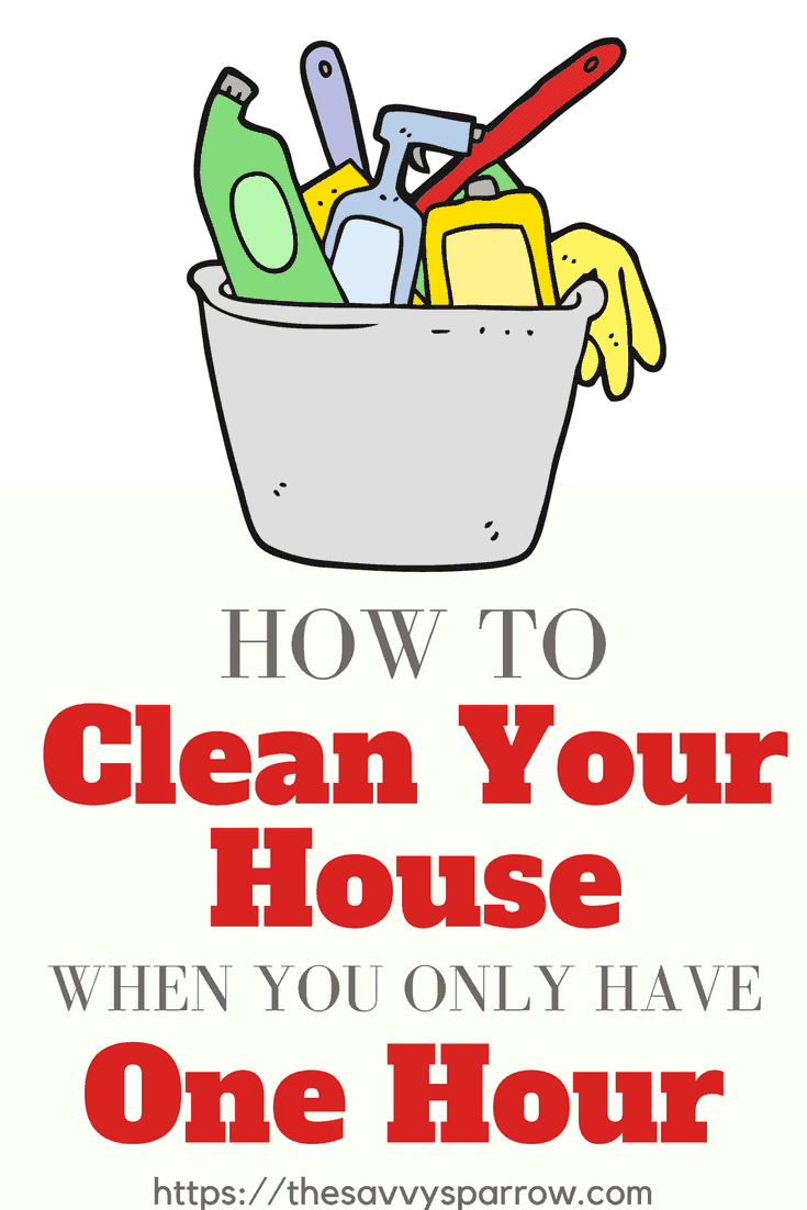 Cleaning Tips for How to Clean Your House when you only have one hour!