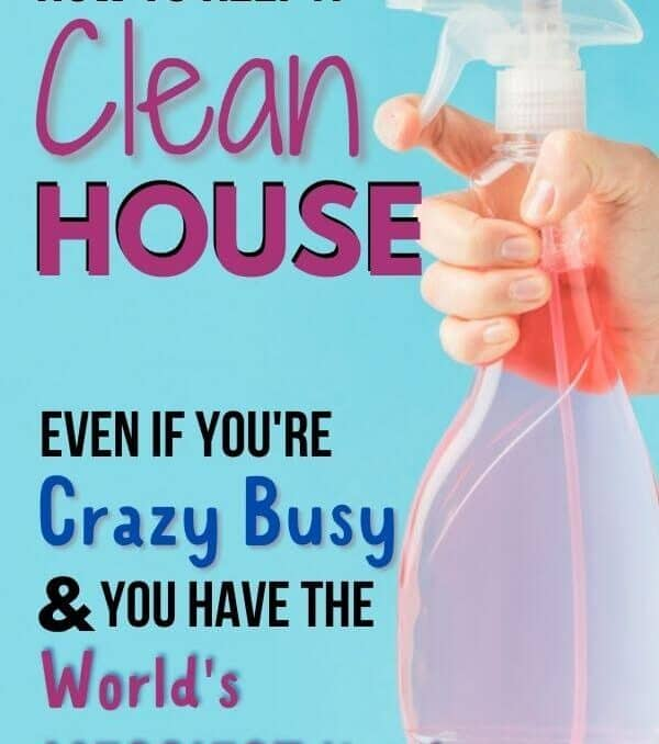 cleaning bottle plus the words how to keep a clean house