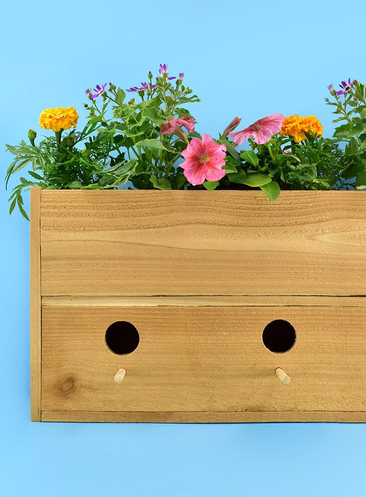 DIY wood planter and birdhouse in one