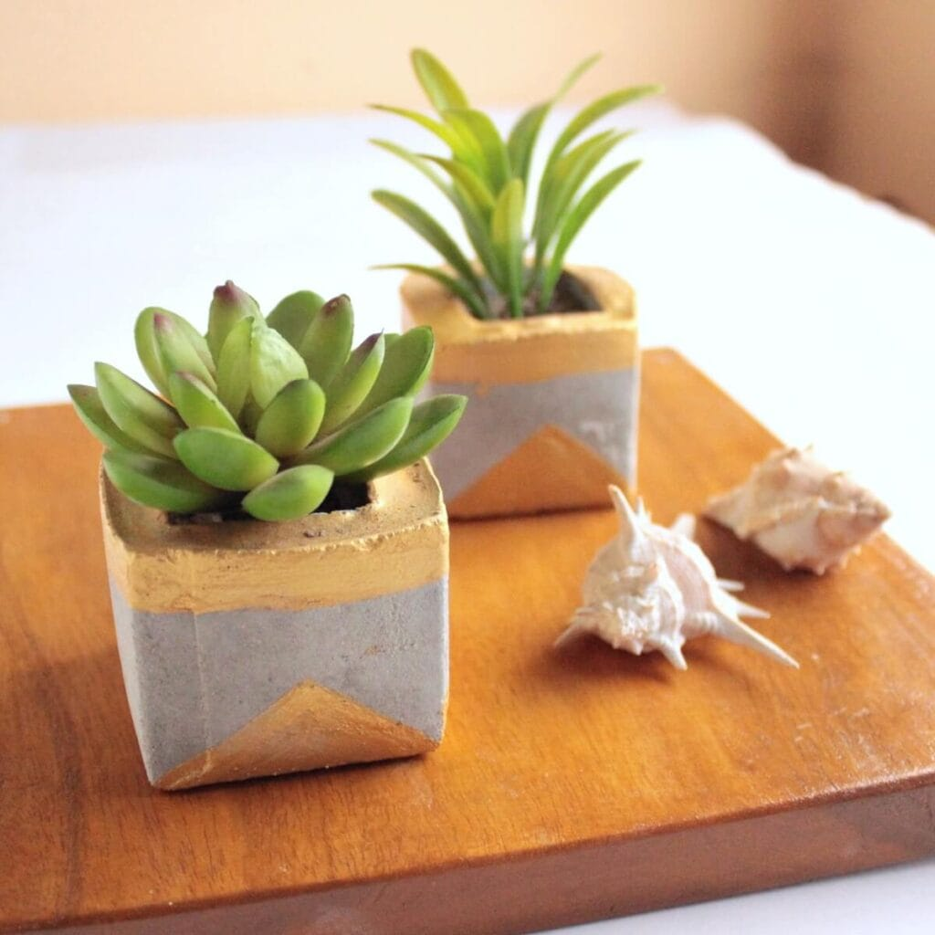 DIY succulent planters made from concrete